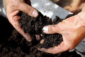 почва влага