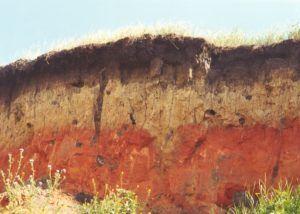 грунт почва
